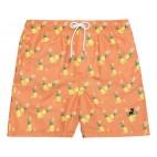 SW Orange Pineapples