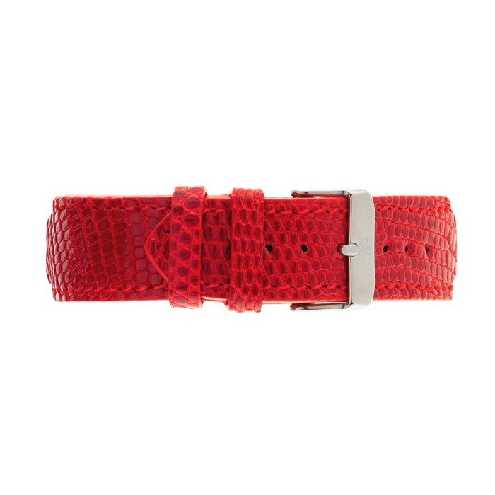 Lizard Red